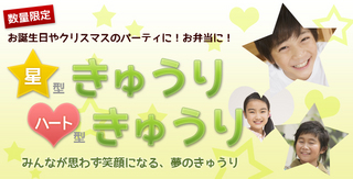 yoshimatsu-mainv.jpg